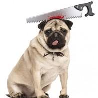 Собачья повязка на голову с декором ножа на Хэллоуин 1шт