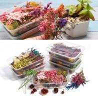 1 коробка красочные настоящие сухие цветы растения ароматерапия свечи формы для эпоксидной смолы для DIY ювелирных изделий дизайн ногтей нак... - Чем заняться осенью?
