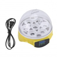 US $20.75 30% OFF|Househould Mini 7 Eggs Incubator Automatic Clear Digital Chicken Duck Bird egg incubator Hatcher Machine on Aliexpress.com | Alibaba Group