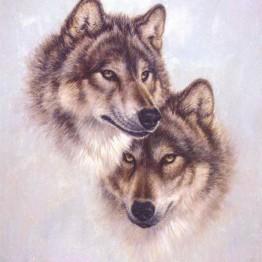 384.77 руб. 49% СКИДКА|DIY кристаллизации алмаза вставить наклейки украшения Живопись Мозаика 5 d вышивка крестиком алмаз Логотип Вышитые Волк купить на AliExpress