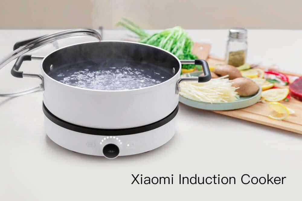 Обзор индукционной варочной панели Xiaomi Mijia Mi Home Induction Cooker