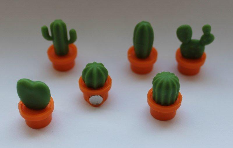 Магниты - кактусы - обзор