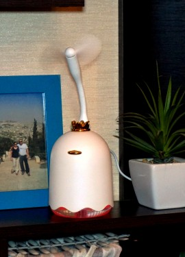 Многофункциональный увлажнитель воздуха и отличные подарки от продавца.