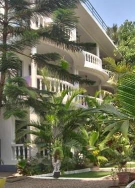 Индия Гоа, отель Double V Arambol тихое и уютное место в кипящем жизнью посёлке.