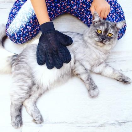 Перчатка для животных