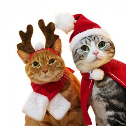 Костюмы для котов\кошек НОВОГОДНИЕ