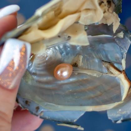 Устрица с настоящей жемчужиной с AliExpress