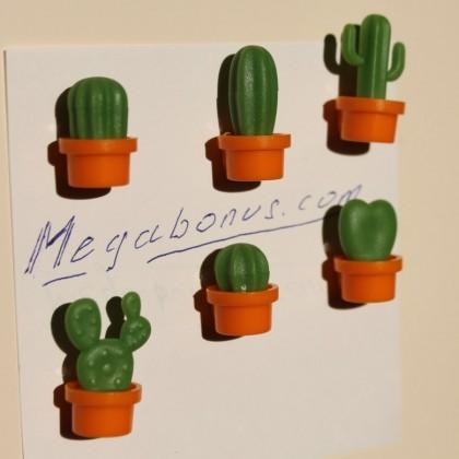 Магниты - кактусы