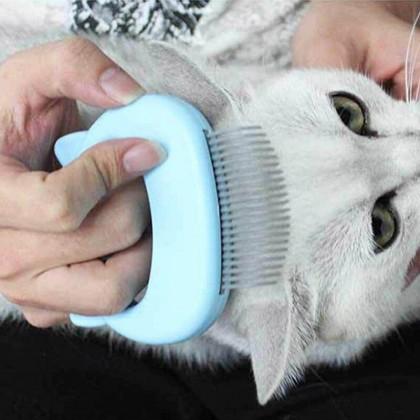 Pet Massage Brush