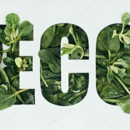 Экология.Сейчас это очень важная тема