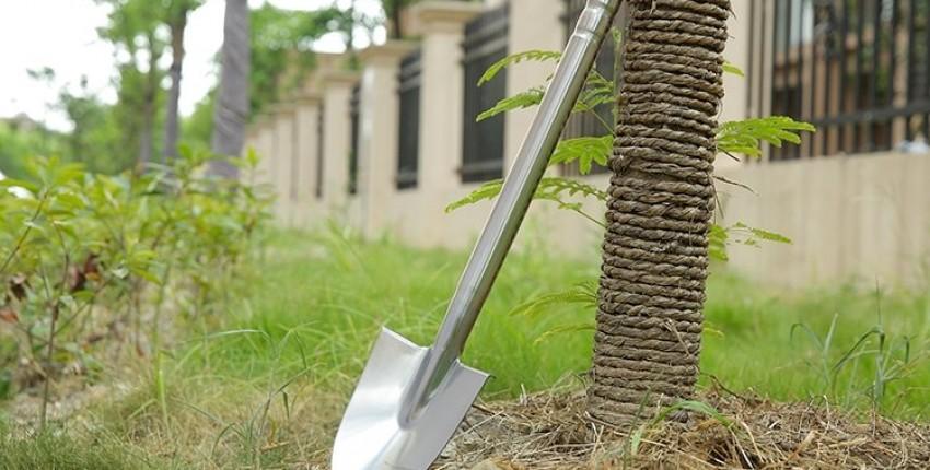 НЕ МАЙСЯ НА МАЙСКИЕ, бери лопату и копай!
