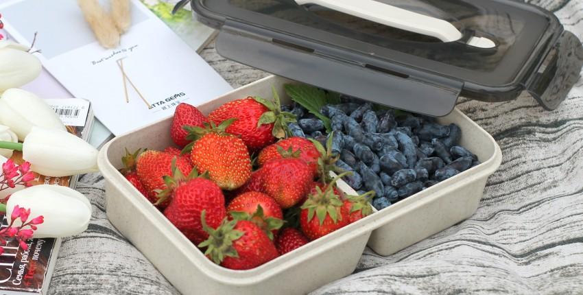 Качественный контейнер для пищевых продуктов - отзыв покупателя