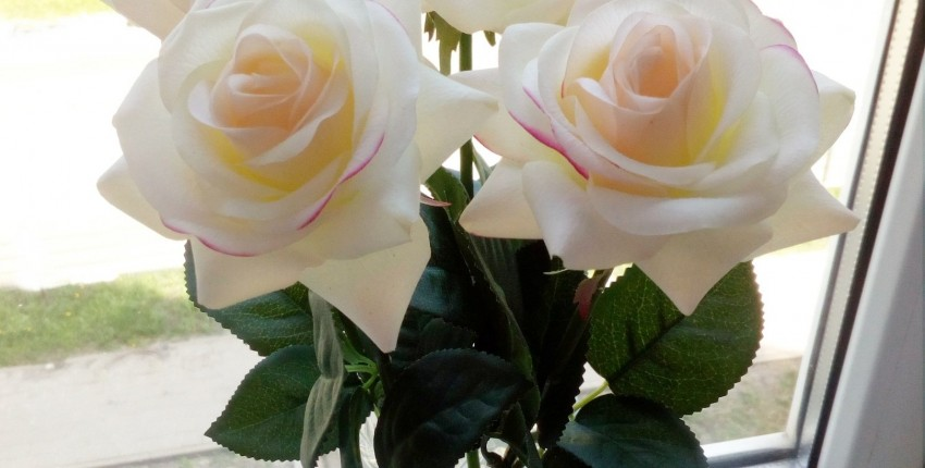 Искусственные, но ОЧЕНЬ реалистичные розы с Алиэкспресс, обзор трёх расцветок