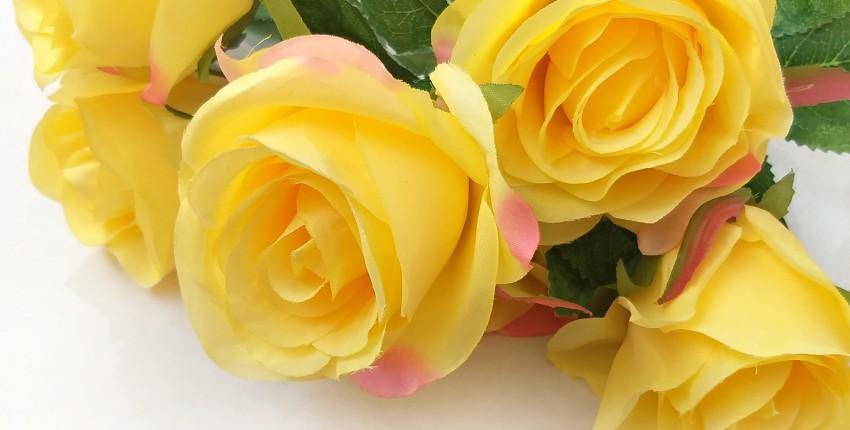 Розы для предметной съемки от BEAFLO. Выглядят очень реалистично!