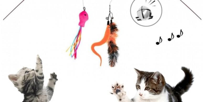 Игрушки для котов и кошек