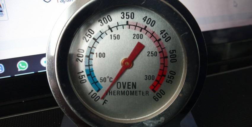 Термометр - отзыв покупателя