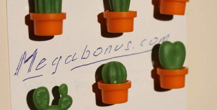 Магниты - кактусы - отзыв покупателя