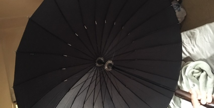 Best umbrella!! - User's review