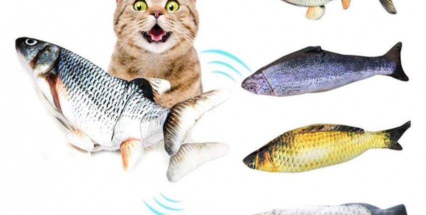 Dancing Fish Cat Toy - User's review