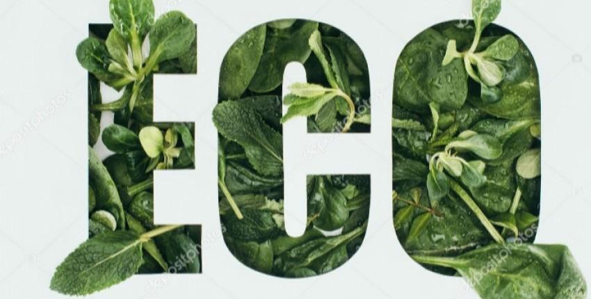 Экология.Сейчас это очень важная тема - отзыв покупателя