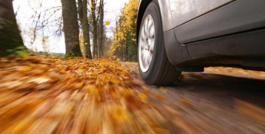 Осенние гаджеты для авто или как облегчить время в пробках - отзыв покупателя
