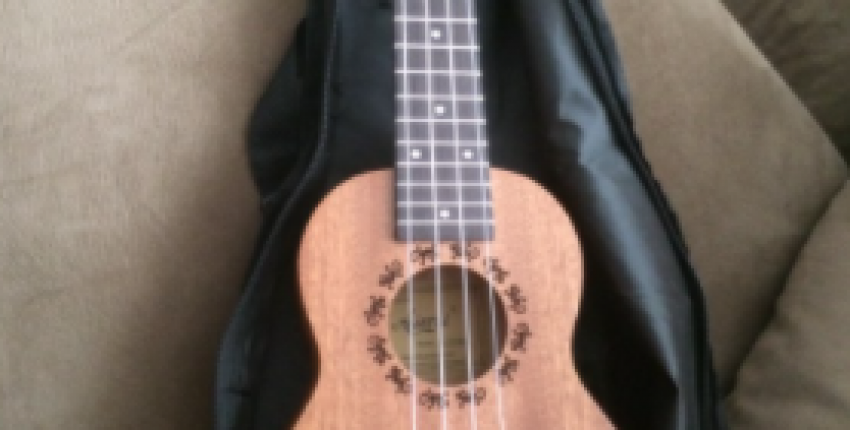 21 inch ukelele mahogany Soprano gecko  musical gifts instrument 4 string - User's review