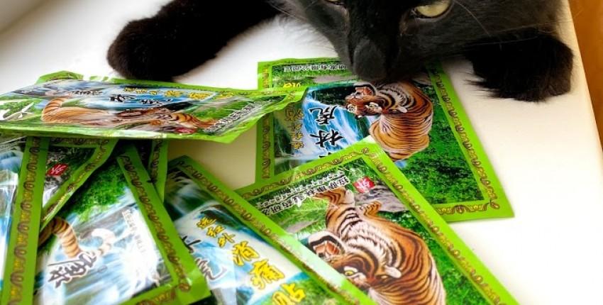 Пластыри тигр 72 шт за 2.9 евро! Помогли лучше всех мазей от боли в спине и шее! - отзыв покупателя