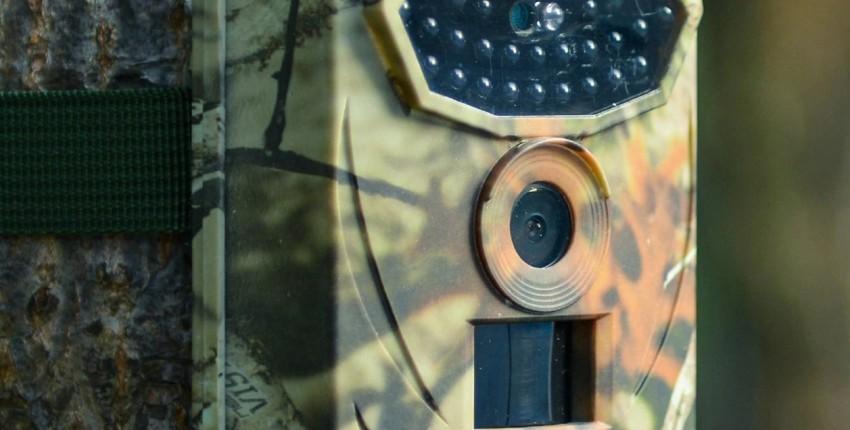 Фото-ловушка / 12MP / детектор диких животных/Trail камера HD / инфракрасное тепловое ночное видение